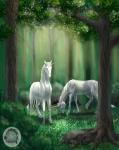 unicorn_forest_copyright_kivuli